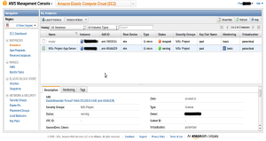 AWS Management Console with my instances